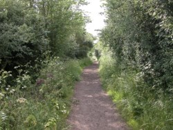 The back track - start of many hacking routes from Limebrook Farm